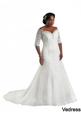 Vedress Plus Size Wedding Dress T801525325539